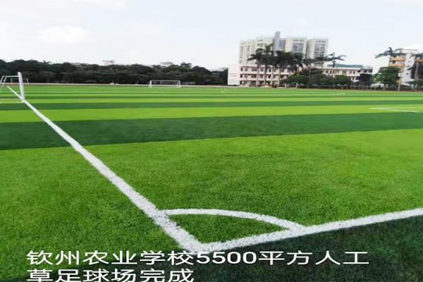 钦州农业学校5500平方人工草足球场
